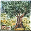 Carrelage - Décoration - Cueillette des Olives D- Motif - Design - Faïence de Provence à Salernes