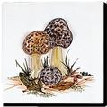 Carrelage - Décoration - Décor 13 Champignons - Motif - Design - Faïence de Provence à Salernes