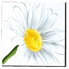 Carrelage - Décoration - Flore - Marguerite - Motif - Design - Faïence de Provence