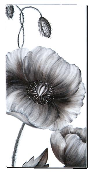 Carrelage d coration flore coquelicot motif design fa ence de provence carrelages - Tatouage coquelicot noir ...