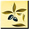 Carrelage - Décoration - Olive- Motif - Design - Faïence de Provence à Salernes