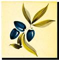 Carrelage - Décoration - Olive C- Motif - Design - Faïence de Provence à Salernes