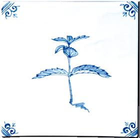 Aromates - Carrelage - Décoration - Delft Provençal- Motif - Design - Faïence