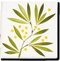 Carrelage - Décoration - Frise Senteur de Provence Mimosas- Motif - Design - Faïence de Provence à Salernes