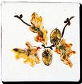 Carrelage - Décoration - Feuille de chêne - Motif - Design - Faïence de Provence à Salernes