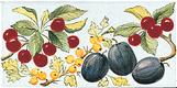 Frise - Carrelage - Décoration - Délices du Luberon - Motif - Design - Faïence de Provence à Salernes