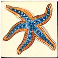 Carrelage - Décoration - Décor 11x11 Coquillages -Motif - Design - Faïence de Provence à Salernes