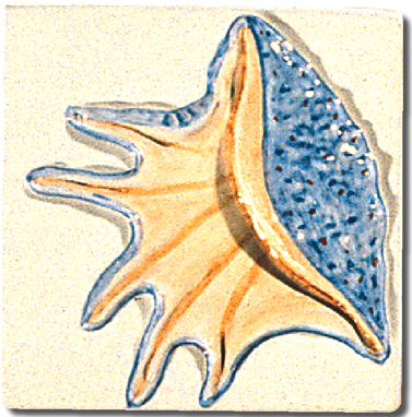 Carrelage d coration d cor 11x11 coquillage e motif for Carreaux faience 11x11
