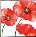carrelages-decoration-Coquelicot-Carrelage émaillé-motif-Design-Salernes
